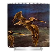 As We Fly Shower Curtain