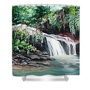 Asa Wright Falls      Sold Shower Curtain