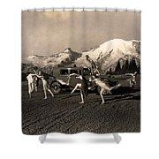 Asahel Curtis, 1874-1941, Dancing Girls At Sunrise Shower Curtain