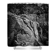 Ascent Of The Spirit Shower Curtain