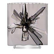 Ascorbic Acid Crystal Shower Curtain