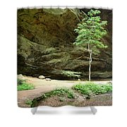 Ash Cave Tree Shower Curtain