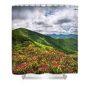 Asheville Nc Blue Ridge Parkway Spring Flowers North Carolina Shower Curtain