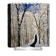 Asheville Nc - Winter Stroll Shower Curtain