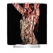 Ashley Shower Curtain by Arla Patch