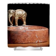 Ashtray With Elefant Shower Curtain