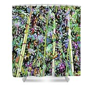 Asian Bamboo Forest Shower Curtain