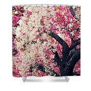Asian Cherry Vignette Shower Curtain