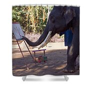 Asian Elephant Painting Picture Shower Curtain