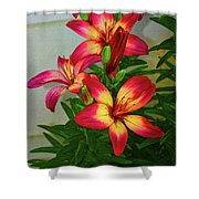 Asian Lilly Spring Time Shower Curtain