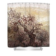 Asian Mist Shower Curtain