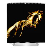 Asian Stallion Shower Curtain