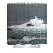 Asilomar Mini Seascape Shower Curtain