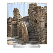 Asklepios Temple Ruins View 2 Shower Curtain