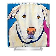 Aslinn Shower Curtain