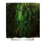 Asparagus Jungle Shower Curtain