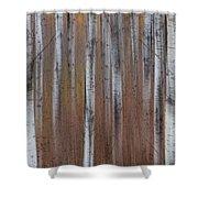 Aspen Abstract Vertical Shower Curtain