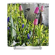 Aspen And Tulips Shower Curtain