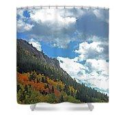 Aspen Brushes Shower Curtain
