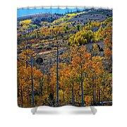 Aspen Cascades In The Sierra Shower Curtain