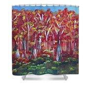 Aspen Fall Shower Curtain