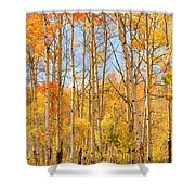 Aspen Fall Foliage Vertical Image Shower Curtain