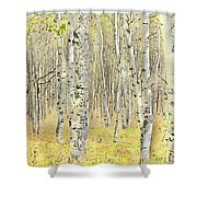 Aspen Forest 2 - Photo Painting Shower Curtain