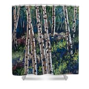 Aspen Glade Shower Curtain
