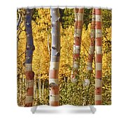 Aspen Gold Red White And Blue Shower Curtain