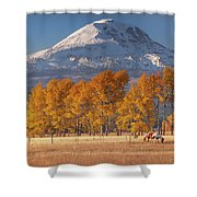 Aspen Grove And Mt Adams Shower Curtain