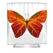 Aspen Leaf Butterfly 2 Shower Curtain