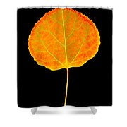 Aspen Leaf Shower Curtain