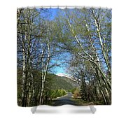 Aspen Lined Road Shower Curtain