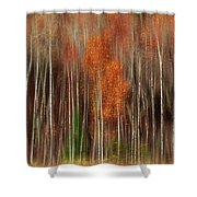 Aspen Motion II, Sturgeon Bay Shower Curtain