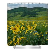 Aspen Sunflower And Mountain Landscape Shower Curtain