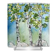 Aspen Trio Shower Curtain