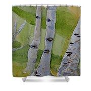 Aspen Trunks Shower Curtain