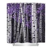 Aspen Trunks Lavender Leaves Shower Curtain