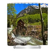 Aspens Around The Crystal Mill Shower Curtain