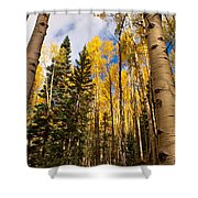 Aspens In Santa Fe 3 Shower Curtain