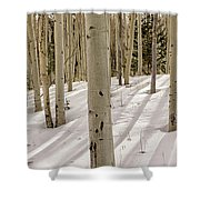Aspens In Winter 2 Panorama - Santa Fe National Forest New Mexico Shower Curtain
