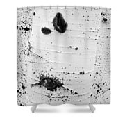 Aspens Ir 0707 Shower Curtain