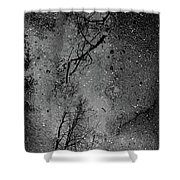 Asphalt-water-tree Abstract Refection 03 Shower Curtain