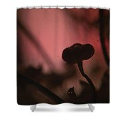 Aspiration With Ghost Shower Curtain