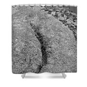 Ass Crack New Mexico In Black And White Shower Curtain