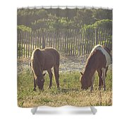 Assateague Island Wild Ponies Shower Curtain