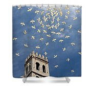 Assisi Sky Shower Curtain