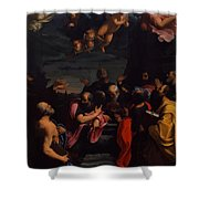 Assumption 1600 Shower Curtain