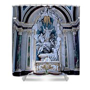 Assumption Of Mary Shower Curtain