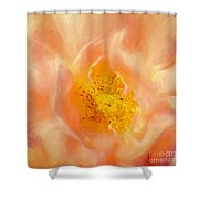 Assumption Rose Shower Curtain